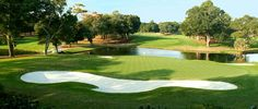 Your Myrtle Beach golf vacation will feature some of the world's most scenic and challenging courses. Play along the Intracoastal Waterway or with views of the Atlantic Ocean on greens designed by greats like Arnold Palmer, Greg Norman, and Jack Nicklaus. Myrtle Beach Golf, Famous Architects, Top 5, Atlantic Ocean, Habitats, Golf Courses, Things To Do, Vacations, World