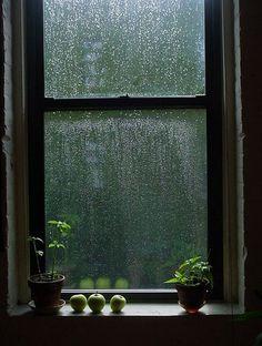 """""""Nella sua mente, seppure in modo confuso, immaginò una casa sua. Inspiegabilmente la vedeva in autunno. Pioveva, i vetri delle finestre erano appannati e lui aveva acceso il fuoco per scaldarsi. Decise di cercarla"""". (James Salter)"""