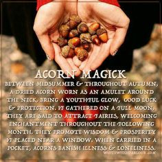 The White Witch Parlour, Peterborough, New Hampshire. A place of spiritual inspiration, divine guidance & blessings of Love & Light! Magick Spells, Magick Book, Green Witchcraft, Hedge Witchcraft, Hoodoo Spells, Jar Spells, Luck Spells, Moon Spells, Wicca Witchcraft