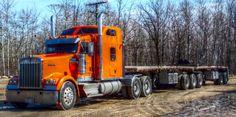 Pelton Bros. Transport - Paris, Ontario Ontario, Transportation, Outdoors, Trucks, Paris, Vehicles, Montmartre Paris, Truck, Paris France