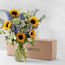 Image result for the daisy bloom & wild