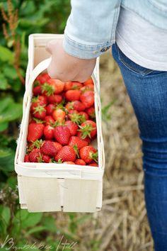 Bumblebee Hill: Erdbeerzeit