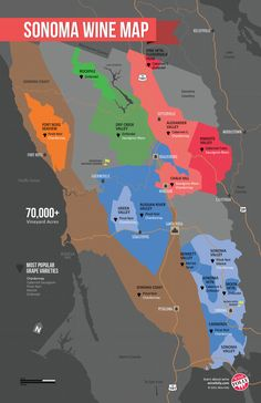 Get to know the Sonoma wine region with this easy map! There are so many amazing places that make a diverse range of wine. Now when you pick up that wine bottle, you'll know what the region is. Sonoma California, California Wine, Danville California, Boot Camp, Sonoma Valley, Napa Valley Map, Wine Folly, Sonoma Wine Country, Wine Education