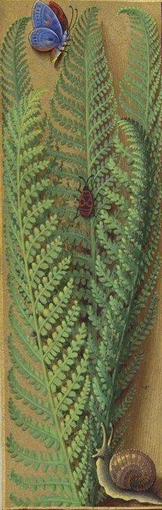 """""""fogere bastarde"""" (Osmondum), Grandes Heures d'Anne de Bretagne, Ms Latin 9474, f°223v"""
