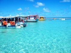 Alagoas - Maragogi  Vale a pena chegar cedo em Maragogi para visitar as Galés, piscinas naturais que se formam pela costa. Como a região está inserida em uma área de preservação ambiental, o número de turistas por ali é controlado.
