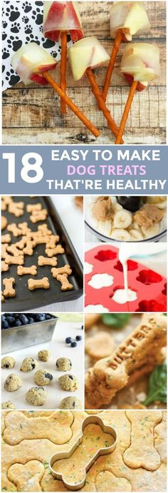 These 18 DIY dog treat recipes are perfect for owners who want to ensure their pet's treats are healthy and wholesome.These 18 DIY dog treat recipes are perfect for owners who want to ensure their pet's treats are healthy and wholesome. Puppy Treats, Diy Dog Treats, Gourmet Dog Treats, Healthy Dog Treats, Homade Dog Treats, Healthy Food, Dog Biscuit Recipes, Dog Treat Recipes, Dog Food Recipes