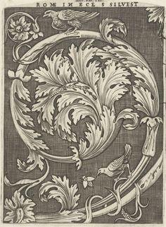 Voluut van acanthusbladeren waarop bovenaan een vogeltje zit, Agostino Veneziano, Anonymous, Antonio Salamanca, 1500 - 1562