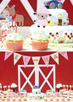 Barn Yard Birthday Party Theme