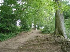 Colemere Caravan Park The Birches, Mill Lane, Colemere, Ellesmere, Shropshire, England, SY12 0QL