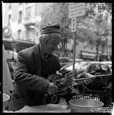 Un nouveau #portrait dans mon projet #Desvies : Pierre le maraicher  A new #portrait in my #photographic project #Lives : Peter the vegetable farmer  Un nuevo #retrato en mi proyeto #Vidas : Pedro el hortelano  http://desvies.fabien-nguyen.fr/galerie.html?page=16  #streetphotography #fotografia #photographie #streetphotography #nice