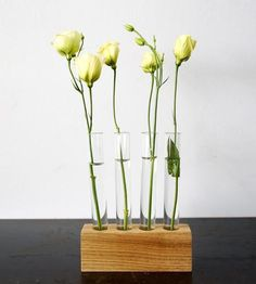 Test Tube Flower Vase Set by Moss & Twig on Scoutmob Shoppe