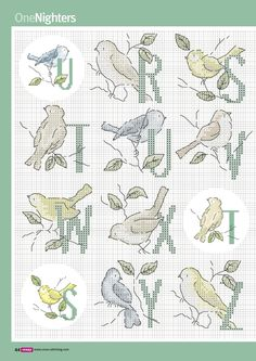 Alphabet with birds R-Z I like the birds