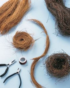 How to make a bird's nest