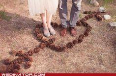 pinning acorns