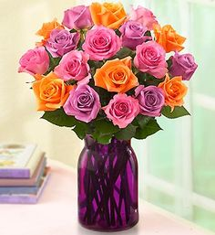 Summer Sorbet Roses purple and orange