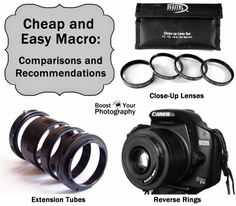 Cheap and Easy Macro: Comparisons and Recommendations | Boost Your Photography