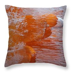 Throw Pillow featuring the photograph Orange Flower by Randi Grace Nilsberg