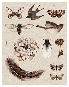 illustration by carter flynn