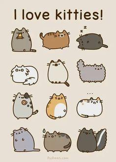I love kitties