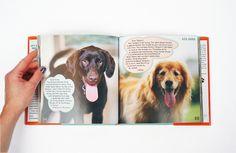 Dean Koontz Ask Anna coffe table book | Minnie in Manhattan