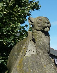 Lioness on the Animal Wall, Cardiff Castle