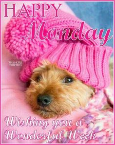 Happy Monday. Wishing You A Wonderful Week. (With Cute Little Doggie BG)