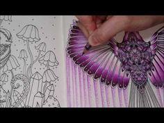 Wing Coloring - Dagdrömmar - YouTube