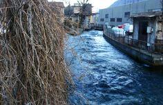 Le acque azzurre del canale invernale. Omegna, Crusinallo, Piemonte.