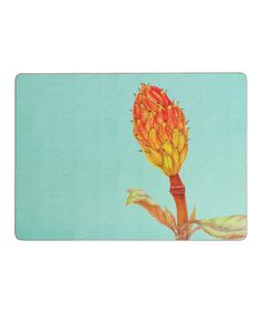 Take a look at this Magnolia Grande Flora Place Mat - Set of Four by rockflowerpaper on #zulily today!
