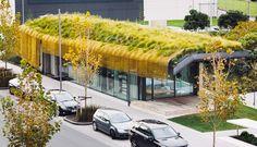 Complexo em aeroporto da Nova Zelândia tem telhado verde e design maori