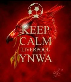 Liverpool Football Club, Liverpool Fc, Football Team, Liverpool You'll Never Walk Alone, Keep Calm Signs, Keep Calm Carry On, Red Day, Alliteration, Poster Series