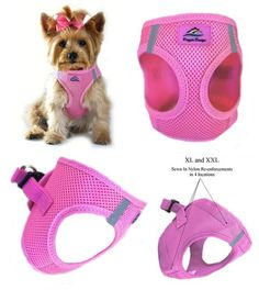 Reflective Choke Free Step-In Dog Harness at GlamourMutt.com
