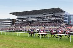 Doncaster Racecourse and Conference Centre, Doncaster, South Yorkshire, England South Yorkshire, Yorkshire England, Racing Events, Barnsley, Heating Systems, Pinterest Marketing, Horse Racing, Britain, United Kingdom