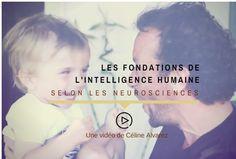 Les fondations de l'intelligence humaine selon les neurosciences : une vidéo de Céline Alvarez