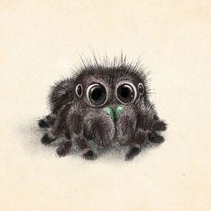 Incredibly cute animal illustrations by Sydney Hanson #spider #tarantula