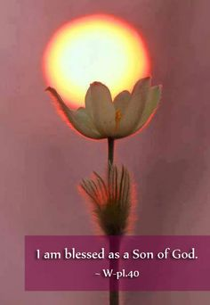 I am blessed as a Son of God. ~ A Course in Miracles, Lesson 40 Beautiful Flower Quotes, Abstract Pencil Drawings, Virtual Flowers, Beautiful Henna Designs, A Course In Miracles, Picture Sharing, Special Quotes, Macro Photography, Flower Photography