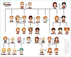 HP family tree Weasley Family Tree, Harry Potter Family Tree, Cute Harry Potter, Harry Potter Drawings, Harry Potter Anime, Harry Potter Pictures, Harry Potter Fan Art, Harry Potter Characters, Harry Potter Fandom