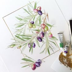 Watercolor fruits & berries on Behance Painting & Drawing, Watercolor Fruit, Botanical Illustration, Berries, Drawings, Inspiration, Layouts, Behance, Food