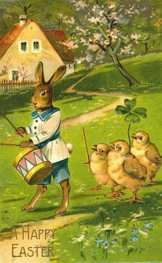 drummer bunny with chicks following
