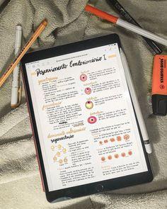 """A little bit of the biology summary, do a great study! Motivation Letter, Study Motivation, School Organization Notes, Study Organization, College Notes, School Notes, Revision Notes, Study Notes, Pretty Notes"