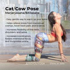 Workout everyday and pounds will fade away. yoga poses for relaxation Basic Yoga Poses, Yoga Tips, Restorative Yoga, Ashtanga Yoga, Learn Yoga, How To Do Yoga, Cat Cow Pose, Cow Pose Yoga, Mudras