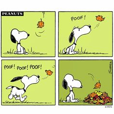Autumn~poof poof