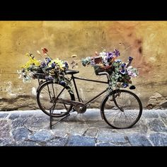 Interesting art in #Florence, #Italy. So many bikes around! by Piratepenpen, via Flickr