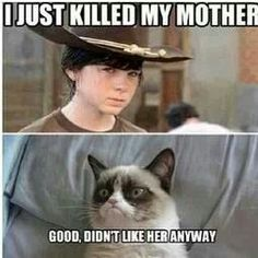 Grumpy Cat & Carl of The Walking Dead. ~Grumpy Cat Mean memes. Walking Dead Funny, Walking Dead Zombies, Carl The Walking Dead, Z Nation, Grumpy Cat, Show Must Go On, The Funny, Scary Funny, Laugh Out Loud