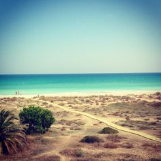 Playa de Almarda, Sagunto