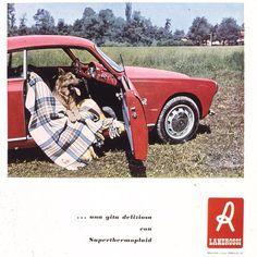 Dal nostro archivio storico. Bella vero? #lanerossi #marzotto #italy #design  #chic #home #homedecor #fashion #casa #arredocasa #styles #blanket #throw #casa #home #vicenza #italia #luxury #lusso #vintage