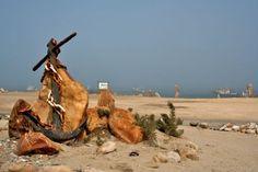 Near the pier, Port Nolloth. Public, South Africa, Giraffe, Camel, Images, Diamond, Gallery, Animals, Giraffes