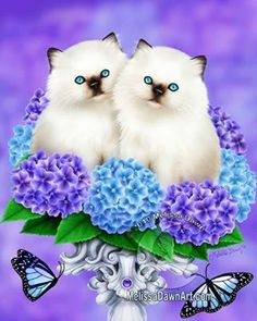 This image influenced me to buy a pink  Hydrangea bush today. Hydrangeas are so beautiful. ����❤  Cats of Spring by Melissa Dawn  http://www...