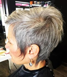 Brown And Gray Short Hairstyle