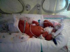 For Parents of Preemies Day: How I Became a Proud Preemie Parent Preemie Mom, Micro Preemie, Nicu, Preemies, Neonatal Nursing, Nursing Degree, Nursing Career, My Future Job, Nurses Day